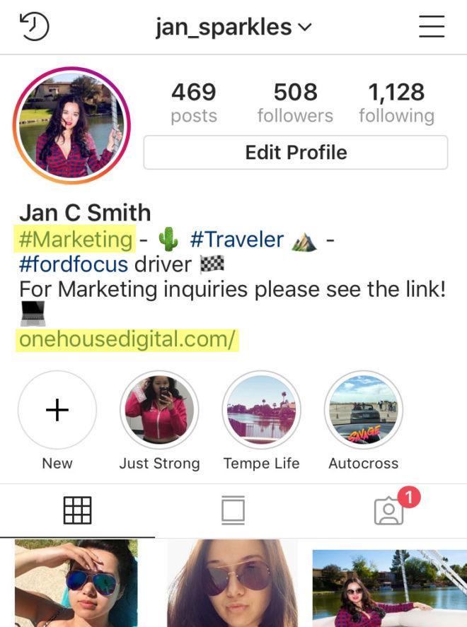 Jan Sparkles Instagram Profile One House Digital